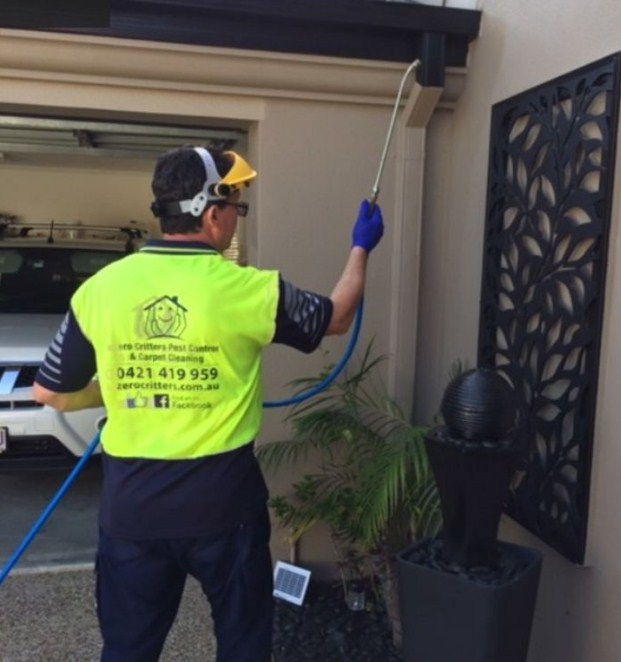 Zero Critters Pest Control - Carpet Cleaning, Pest Control Robina